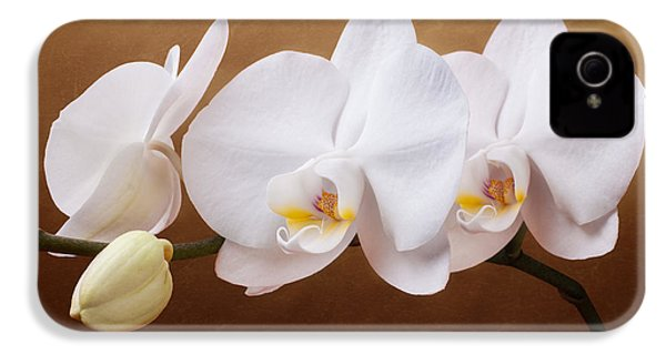 White Orchid Flowers And Bud IPhone 4 Case