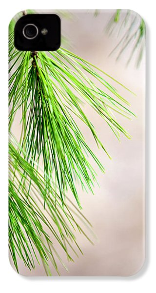 IPhone 4 Case featuring the photograph White Pine Branch by Christina Rollo