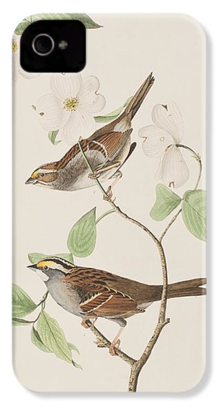 White Throated Sparrow IPhone 4 Case by John James Audubon