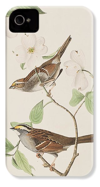 White Throated Sparrow IPhone 4 Case by John James Audubon