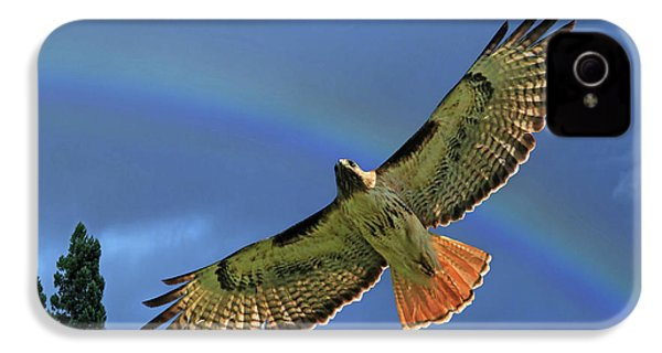Wings 2 IPhone 4 / 4s Case by Donna Kennedy