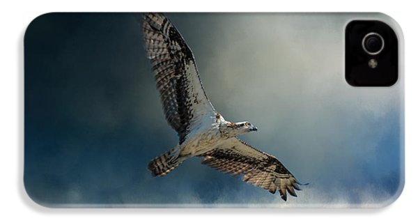 Winter Osprey IPhone 4 / 4s Case by Jai Johnson
