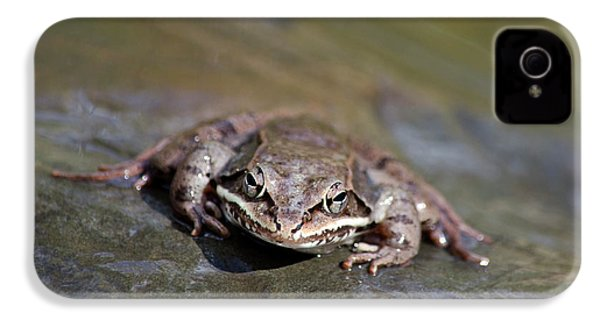 IPhone 4 Case featuring the photograph Wood Frog Close Up by Christina Rollo