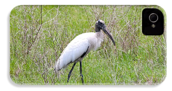 Wood Stork In The Marsh IPhone 4 Case by Carol Groenen