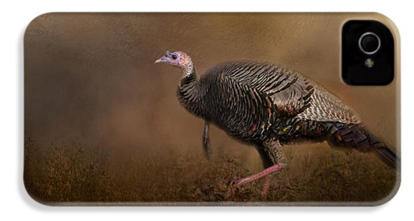 Woodland Walk - Wild Turkey Art IPhone 4 / 4s Case by Jai Johnson