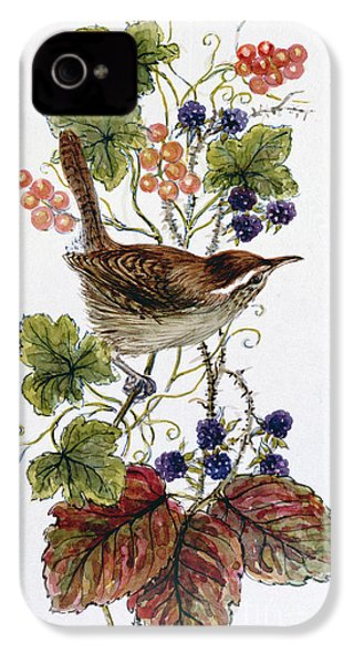 Wren On A Spray Of Berries IPhone 4 Case by Nell Hill
