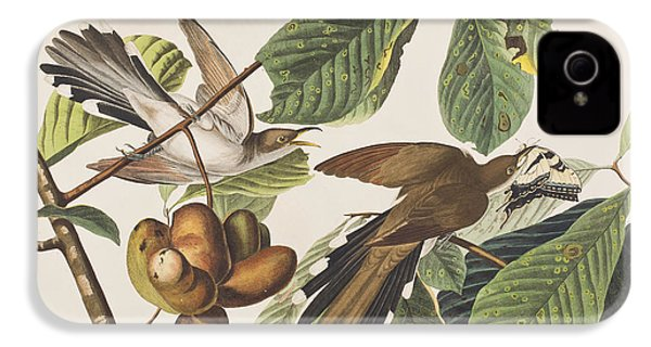 Yellow Billed Cuckoo IPhone 4 Case by John James Audubon