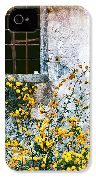 IPhone 4 Case featuring the photograph Yellow Flowers And Window by Silvia Ganora