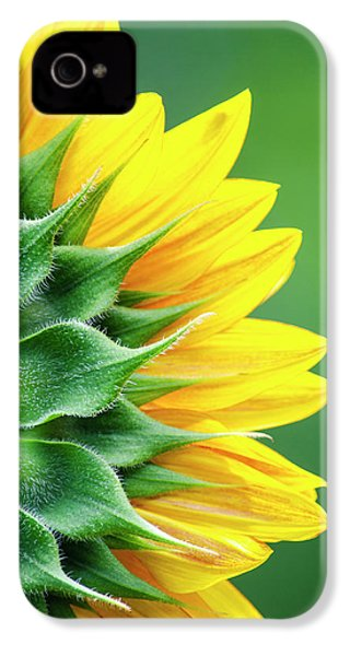 Yellow Sunflower IPhone 4 Case by Christina Rollo