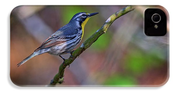 Yellow-throated Warbler IPhone 4 / 4s Case by Rick Berk