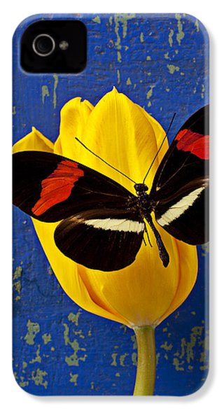 Yellow Tulip With Orange And Black Butterfly IPhone 4 Case by Garry Gay
