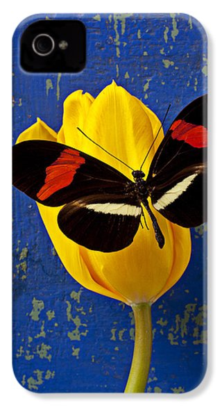 Yellow Tulip With Orange And Black Butterfly IPhone 4 / 4s Case by Garry Gay