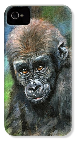 Young Gorilla IPhone 4 Case by David Stribbling