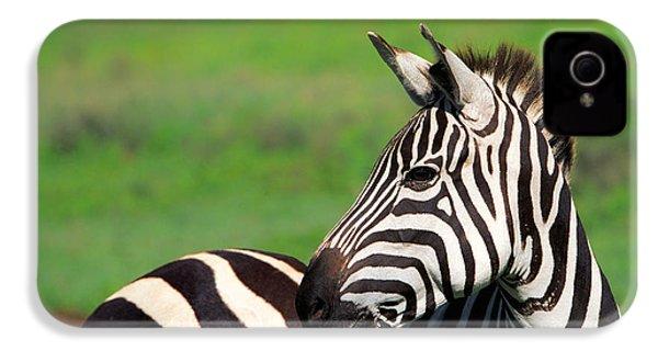 Zebra IPhone 4 Case by Sebastian Musial