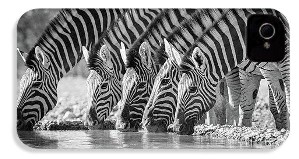 Zebras Drinking IPhone 4 Case by Inge Johnsson
