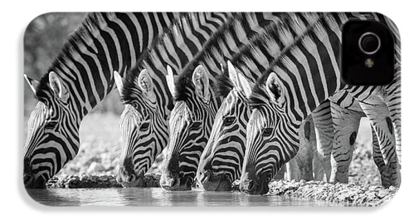 Zebras Drinking IPhone 4 / 4s Case by Inge Johnsson