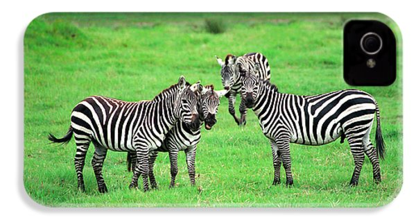 Zebras IPhone 4 / 4s Case by Sebastian Musial