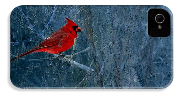 Northern Cardinal IPhone 4s Case by Thomas Young