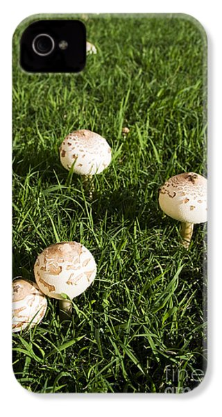 Field Of Mushrooms IPhone 4s Case by Jorgo Photography - Wall Art Gallery