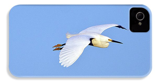 Florida, Venice, Snowy Egret Flying IPhone 4s Case by Bernard Friel