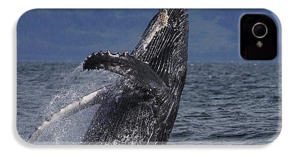 Humpback Whale Breaching Prince William IPhone 4s Case by Hiroya Minakuchi