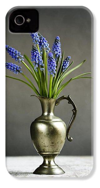 Hyacinth Still Life IPhone 4s Case by Nailia Schwarz