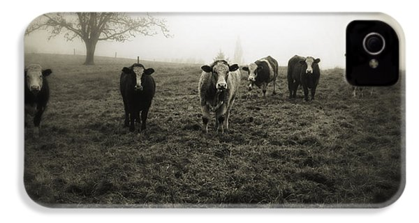 Livestock IPhone 4s Case by Les Cunliffe
