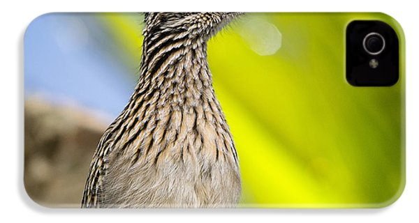 The Roadrunner  IPhone 4s Case by Saija  Lehtonen