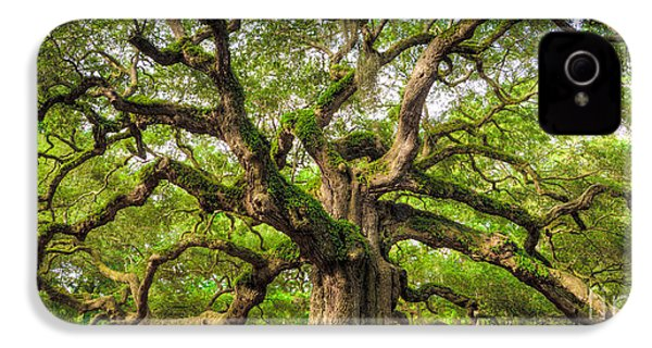 Angel Oak Tree Of Life IPhone 4s Case