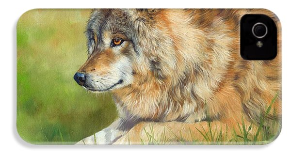 Grey Wolf IPhone 4s Case by David Stribbling