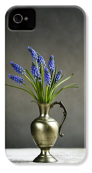Hyacinth Still Life IPhone 4s Case by Nailia Schwarz