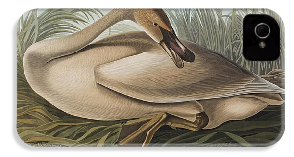 Trumpeter Swan IPhone 4s Case by John James Audubon