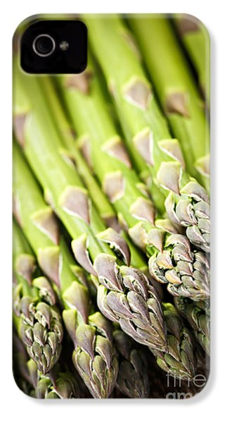 Asparagus IPhone 4s Case by Elena Elisseeva