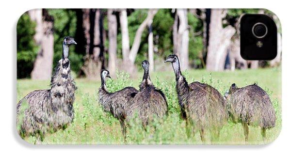 Emu (dromaius Novaehollandiae IPhone 4s Case