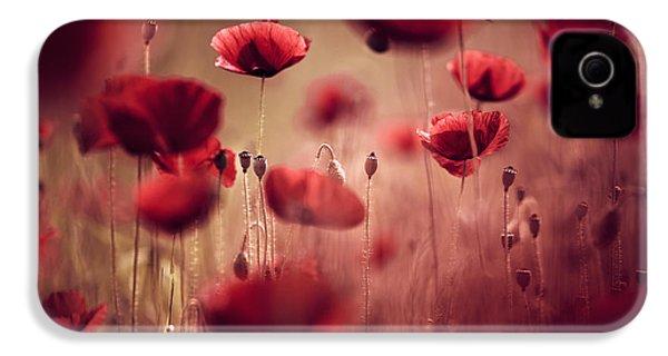 Summer Poppy IPhone 4s Case by Nailia Schwarz