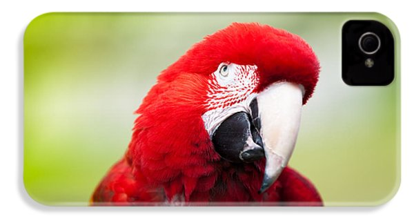 Parrot IPhone 4s Case by Sebastian Musial