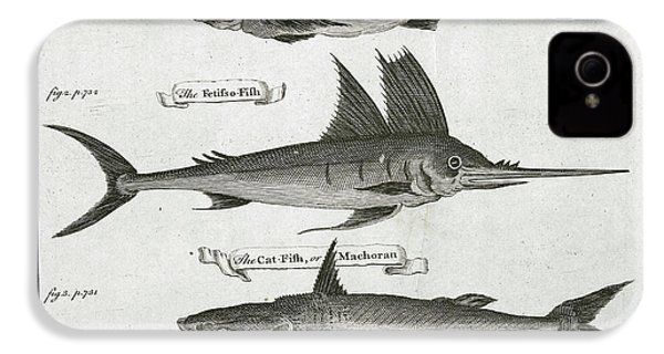 Fish IPhone 4s Case by British Library