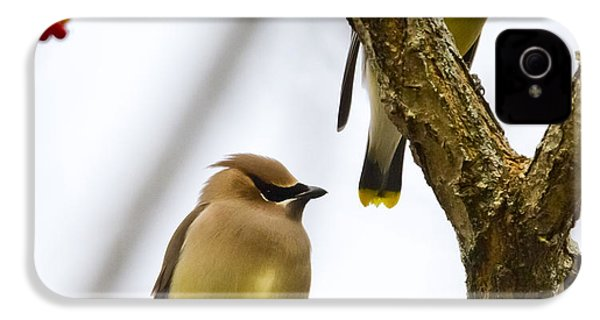 IPhone 4s Case featuring the photograph A Pair Of Cedar Waxwings by Ricky L Jones