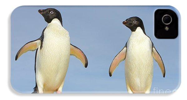 Adelie Penguin Duo IPhone 4s Case