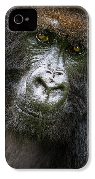 Africa Rwanda Female Mountain Gorilla IPhone 4s Case by Ralph H. Bendjebar