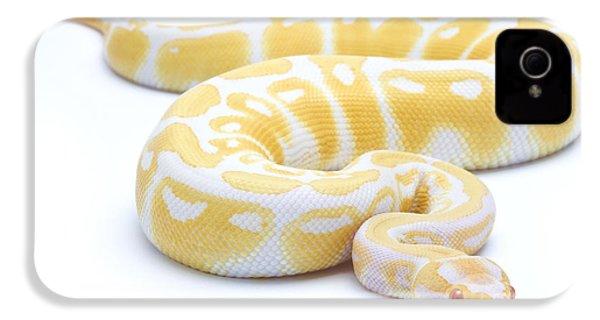 Albino Royal Python IPhone 4s Case