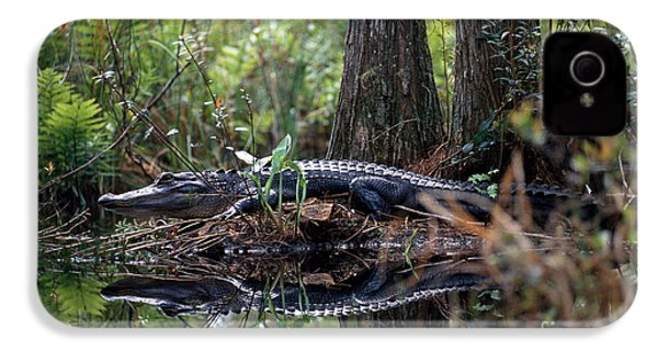 Alligator In Okefenokee Swamp IPhone 4s Case by William H. Mullins