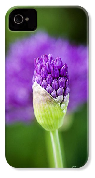 Allium Hollandicum Purple Sensation IPhone 4s Case