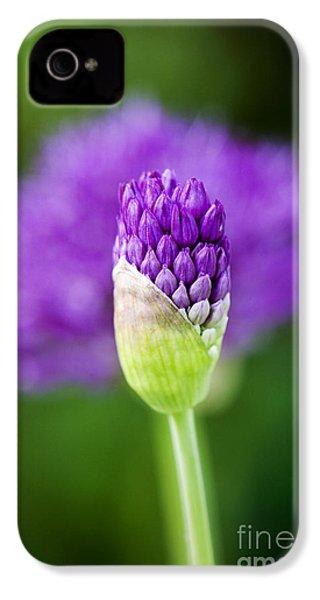 Allium Hollandicum Purple Sensation IPhone 4s Case by Tim Gainey