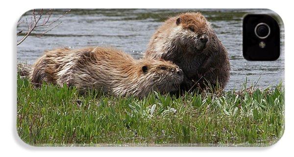 American Beaver Pair IPhone 4s Case