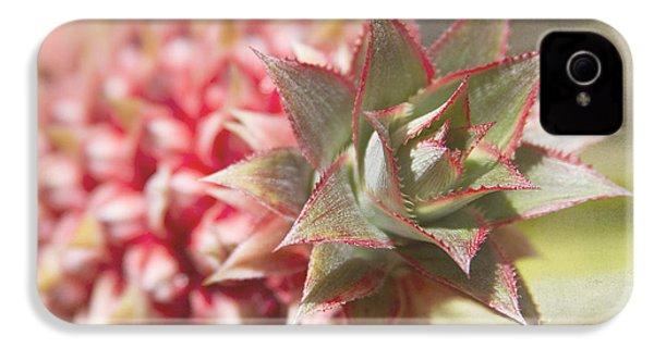 Ananas Comosus - Pink Ornamental Pineapple IPhone 4s Case