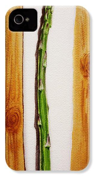 Asparagus Tasty Botanical Study IPhone 4s Case