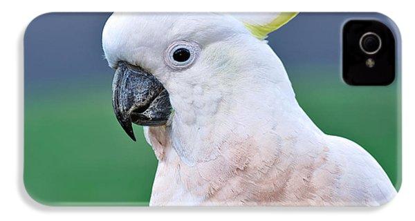 Australian Birds - Cockatoo IPhone 4s Case by Kaye Menner
