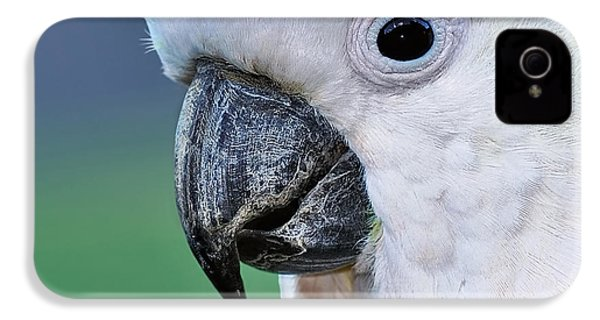 Australian Birds - Cockatoo Up Close IPhone 4s Case by Kaye Menner
