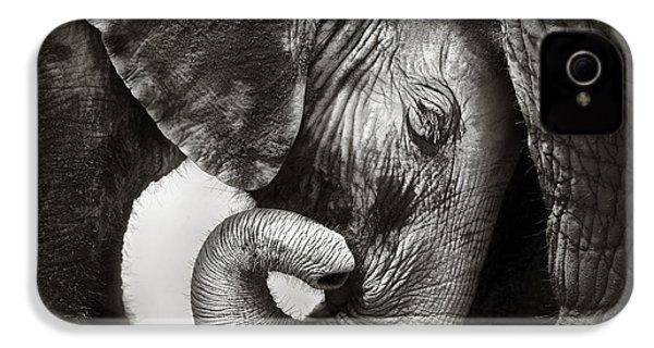 Baby Elephant Seeking Comfort IPhone 4s Case by Johan Swanepoel